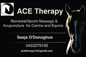Open For Business  – Ace Therapy